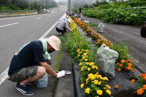 ルート336花壇整備